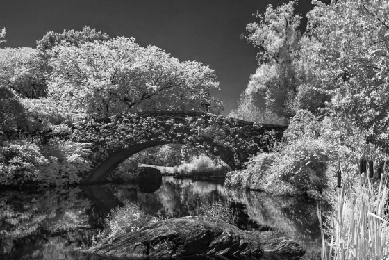 Photo 0 by Oleg March for Infrared Landscapes