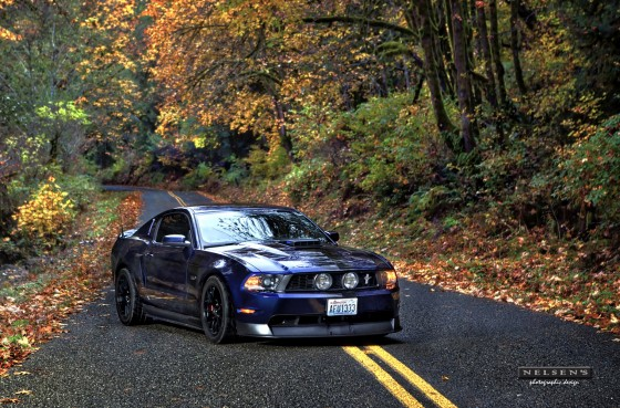 Mustang in Fall colors