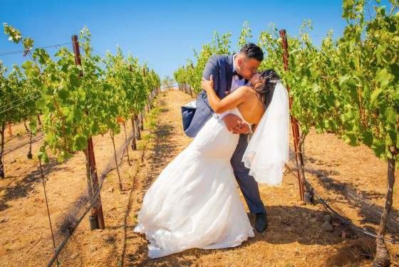 Kissing in the Grape Fields