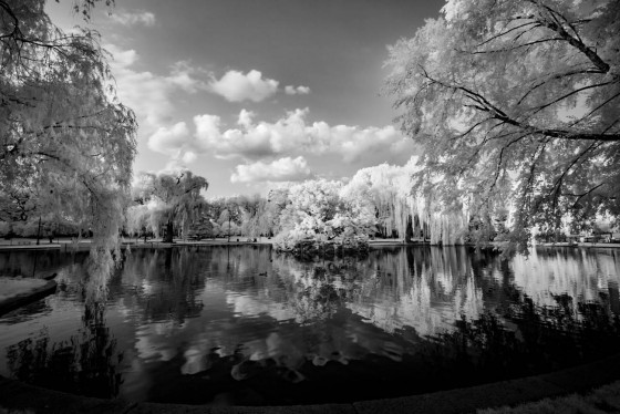 Photo 4 by Oleg March for Infrared Landscapes