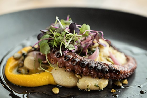 farm to table octopus
