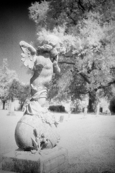 Cherub On Orb Maplewood Cemetery, Wilmington, NC Digital B&W, 2015