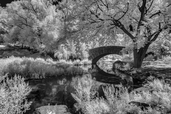 Photo 1 by Oleg March for Infrared Landscapes