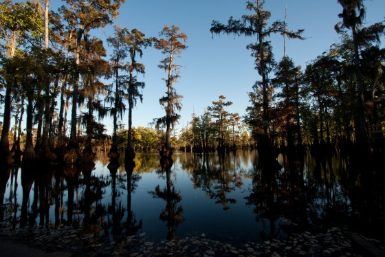 Cheniere Lake Park : Monroe, LA Chamber of Commerce Guide 2014