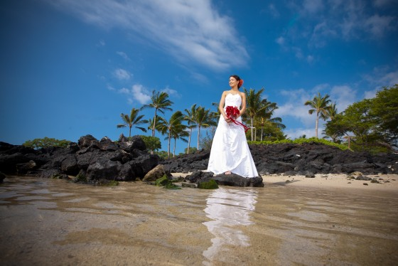 Photo 1 by Bob Brown for Wedding Photography