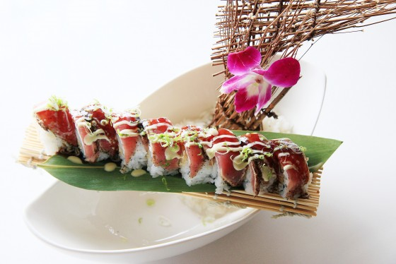 sushi roll concept food photography