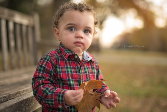 Photo 3 by KoryWilliamsPhotography for Portraits (Toddlers)