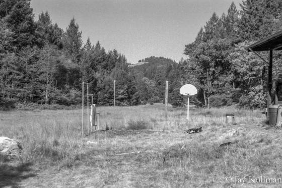 Backyard, Willits, CA