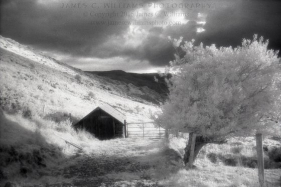 Nestled Turf Shed Healy Pass, Co. Cork, Ireland Infrared Film, 2009