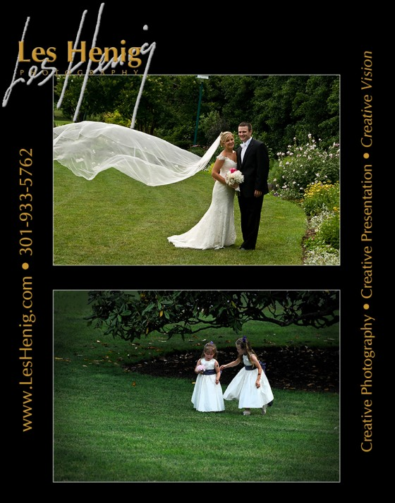 Photo 1 by Les Henig for Wedding Photography