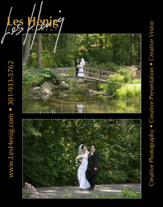 Photo 5 by Les Henig for Wedding Photography