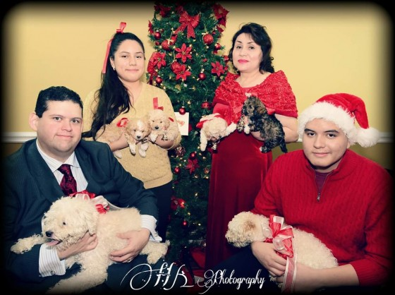 Photo 1 by Hk Photography for Family Portraits