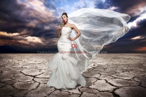 Photo 4 by Creative Estudios for Wedding