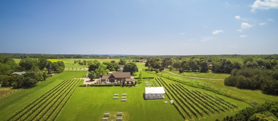 Jamesport Vineyards - Drone Photography