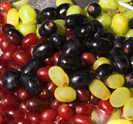 Assorted Fresh Juicy Grapes